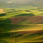 Washington State by Olga Zvereva by Olga Zvereva