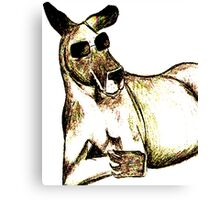 Cool Kangaroo (Colour) Canvas Print