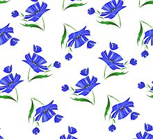 Cornflowers drawn on a white background. by LourdelKaLou