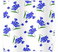 Cornflowers drawn on a white background. Poster