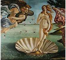 Birth of Venus - Botticelli  Photographic Print