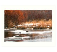 Churchill River Art Print