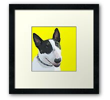 ENGLISH BULL TERRIER Framed Print
