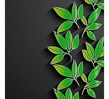 Black background with green abstract leaves Photographic Print