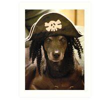 Yo Ho Yo Ho... A Pirate's Life For Me....  Art Print