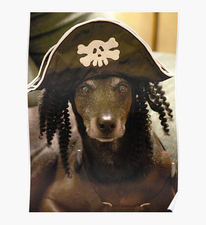 Yo Ho Yo Ho... A Pirate's Life For Me....  Poster