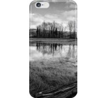 What a lovely view! iPhone Case/Skin