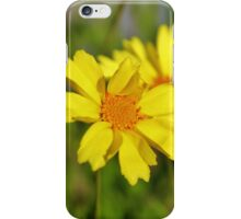 Crown Daisies iPhone Case/Skin