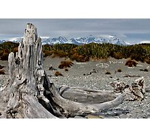 Gillespie's Beach, New Zealand Photographic Print