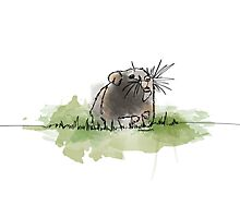 Hamster - Single Line Photographic Print