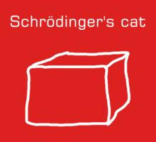 Schrödinger's cat Kids Clothes