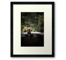 Settled Framed Print