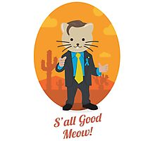 S'all Good Meow! Photographic Print