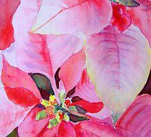 Christmas Poinsettia by Ruth S Harris