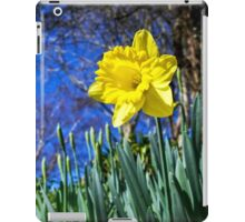 Happy St David's Day iPad Case/Skin