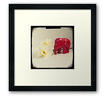 Little elephant Framed Print