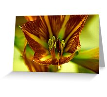 Factalius Stamen Greeting Card