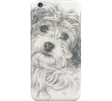 Another Cavachon  iPhone Case/Skin