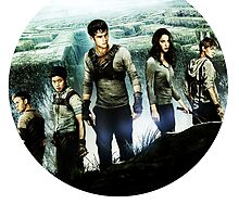 the gladers by notthehero