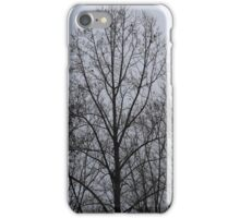 Silhouette  iPhone Case/Skin