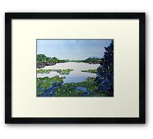 Blue Gill Spot Framed Print