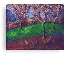 Orchard in blossom Canvas Print