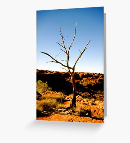 outback tree Greeting Card