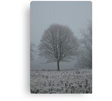 Freezing Fog 4 Canvas Print