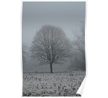 Freezing Fog 4 Poster