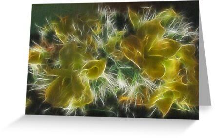 Poinsettia decoration by Sandy Keeton