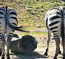 BIG BUTTS AND HORIZONTAL STRIPS LOL by Dave7074