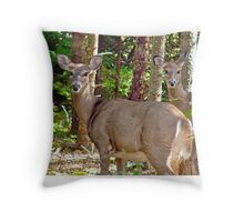 Deer at Seawall Campground Throw Pillow