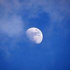 Moonshine by vigor