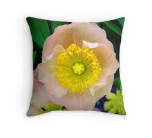 Yellow & Pink Flower Closeup Throw Pillow