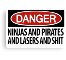 Ninjas and Pirates and Lasers, Oh My! Canvas Print