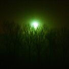 LightInTheNight`sFog by misiabe80