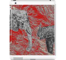 Photoshop Freedom iPad Case/Skin