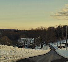 The country in winter by vigor