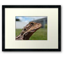 Mt Dragon 3 Framed Print
