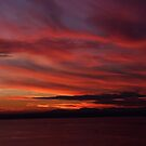 Ballard Buff Overlooking Puget Sound by IanPharesPhoto