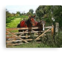 Horses over the fence Canvas Print