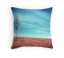 Seek the Mystery Throw Pillow