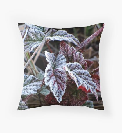 Frosty Morning at Kirk Park Throw Pillow