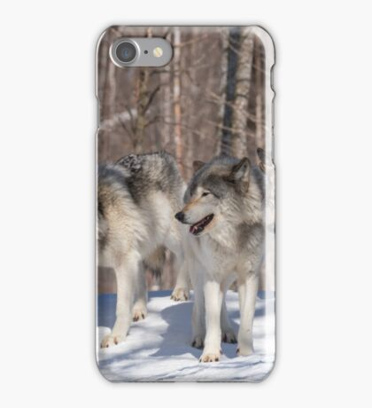 Timber wolves in winter iPhone Case/Skin