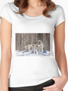 Timber wolves in winter Women's Fitted Scoop T-Shirt