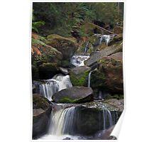 Keppels Falls near Marysville Poster