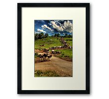 Cattle train Framed Print