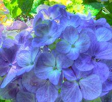 Glorious Blue by Daniel Rayfield