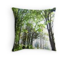 near-death experience Throw Pillow