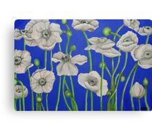 Acrylic Poppies Canvas Print